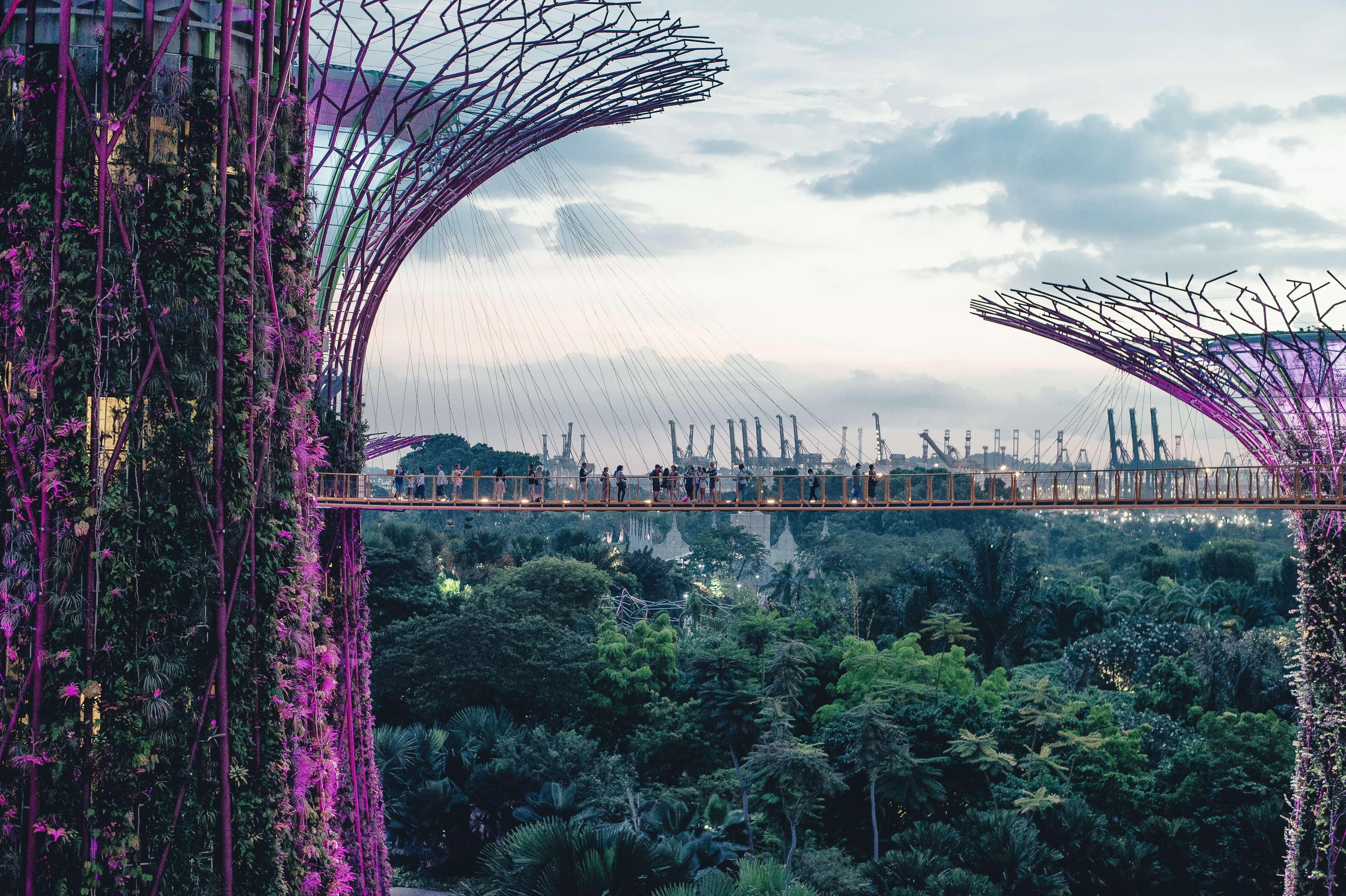 2050 werden voraussichtlich 70% der Menschen in urbanen Ballungszentren leben. Die Städte von morgen könnten sehr viel grüner sein. Foto: Annie Spratt