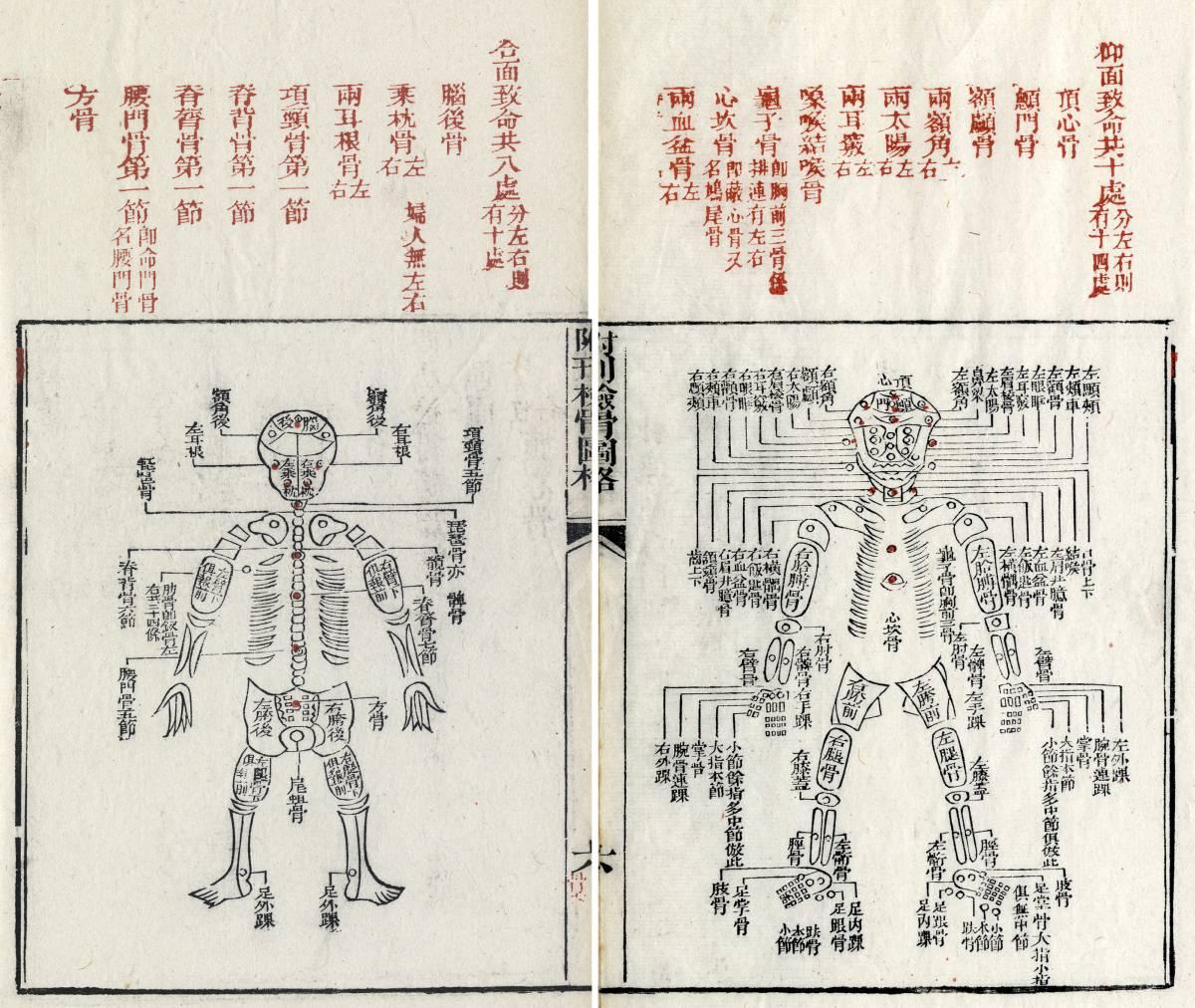 Biometrie in der Antike: