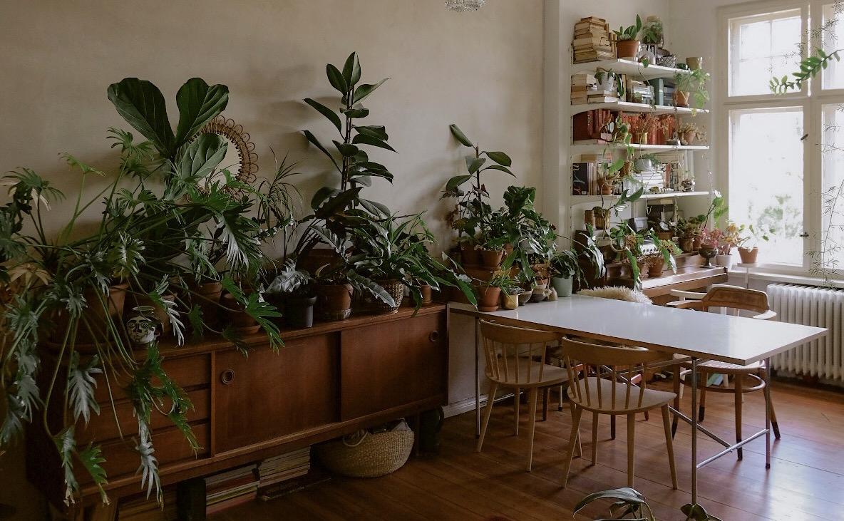 Wenn sich das ganze Leben – inklusive Arbeit und Outdoor Hobbies – zuhause abspielt; wie privat ist dann die eigene Wohnung noch? Foto: Theodora Melnik